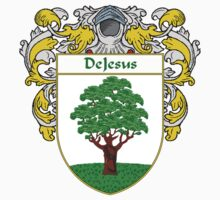 DeJesus Coat of Arms/Family Crest by William Martin