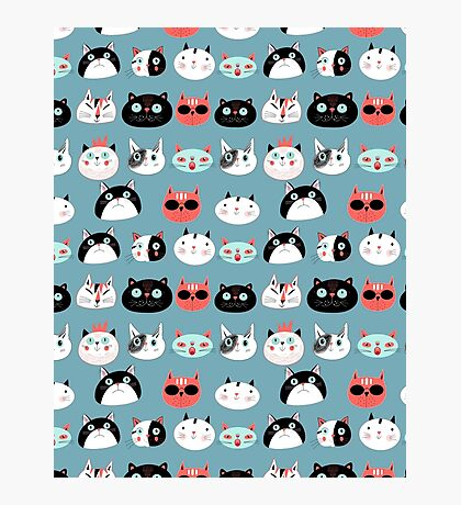 pattern amusing portraits of cats Photographic Print