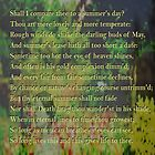 Shakespeare Sonnet 18 by KayeDreamsART
