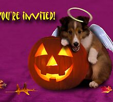 You're Invited Angel Shetland Sheepdog by jkartlife