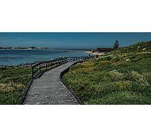 penguin island  Photographic Print