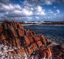 lichen  wocks and waves by Kip Nunn
