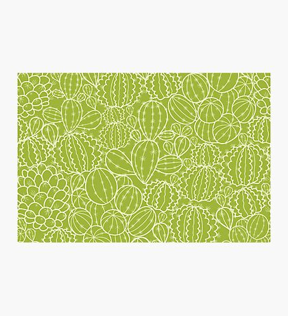 Cactus plants texture pattern Photographic Print
