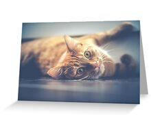 Raise your cute level! Greeting Card