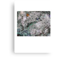 Fossil Carnage 1 Canvas Print