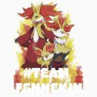 #TeamFennekin by iibbo1