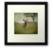 Charging Stag Framed Print