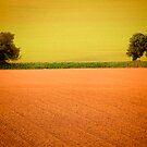 Mid Devon Rural by Mike  Waldron
