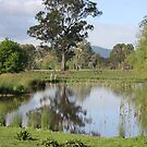 Reflections in Country Victoria by Kymbo