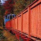 Autumn Stowaway  by PineSinger