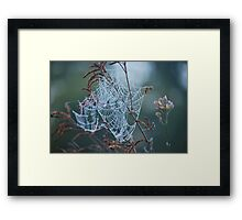 Nature's Engineers 5 Framed Print