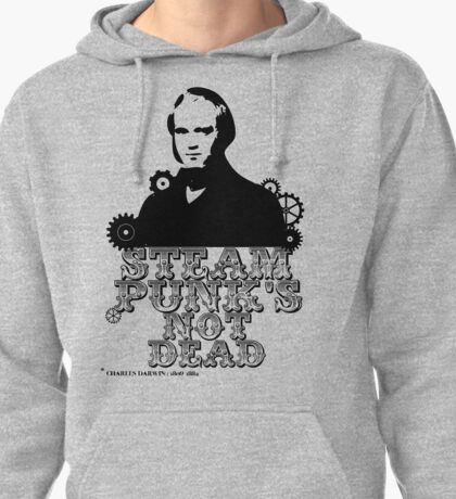 Charles Darwin was a punk Pullover Hoodie