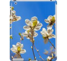 Magnolia tree blossoms iPad Case/Skin