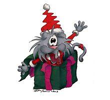 Gato christmas time #7 Photographic Print