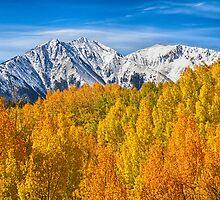 Colorado Rocky Mountain Autumn Beauty by Bo Insogna
