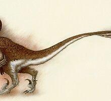Deinonychus Study by Himmapaan