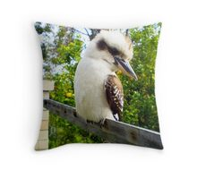 Kookaburra And Lemon Tree City Beach 08 10 13 Throw Pillow