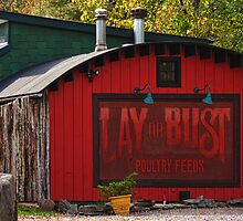 Lay or Bust by PineSinger