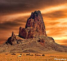 Under Desert Skies by Lanis Rossi