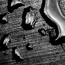 Raindrops by Benedikt Amrhein
