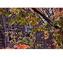 Windows View Through Autumn Photographic Print