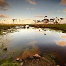 Flood plains of Stanley by Stephen Gregory