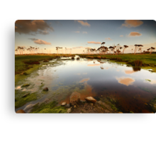 Flood plains of Stanley Canvas Print