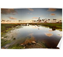 Flood plains of Stanley Poster