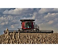 Cuttin' Beans - Case Photographic Print