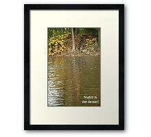 Water is my home! Framed Print