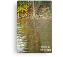 Water is my home! Metal Print