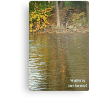 Water is my home! Metal Print
