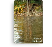 Water is my home! Canvas Print