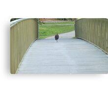 Turkey Casually Strolling Across a Bridge Canvas Print