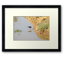 """Stalk"" Framed Print"
