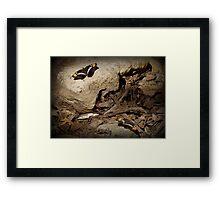 Arizona Sister Butterflies Framed Print