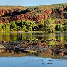 Coongan Gorge by Ladyshark