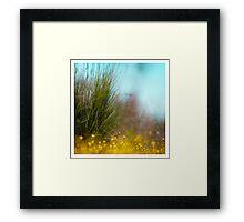 Faerie undergrowth Framed Print