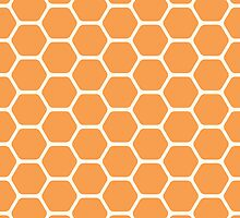 Orange Honeycomb by kwg2200