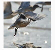 Dunlin (Calidris alpina) - Crosby Beach, UK Baby Tee