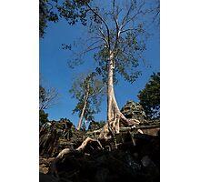 Angkor Wat Sanctuary - 48 Photographic Print
