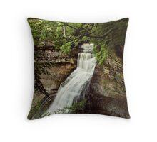 Chapel Falls Throw Pillow