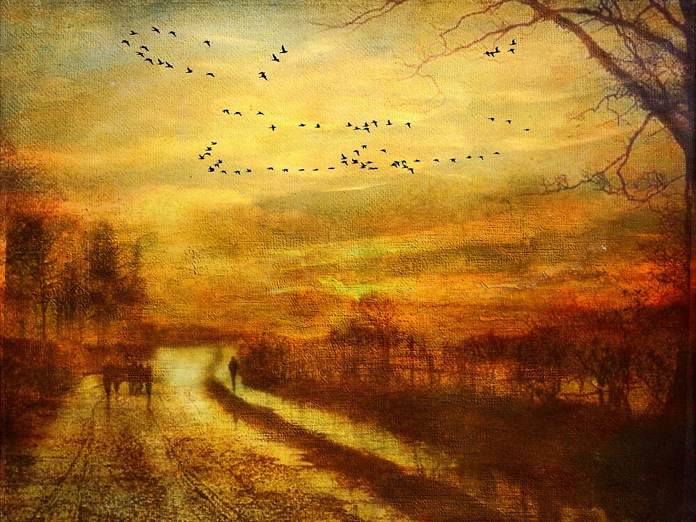 Autumn landscape by © Kira Bodensted