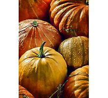 purely pumpkin Photographic Print