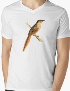 African Soft-tail by William Swainson Mens V-Neck T-Shirt