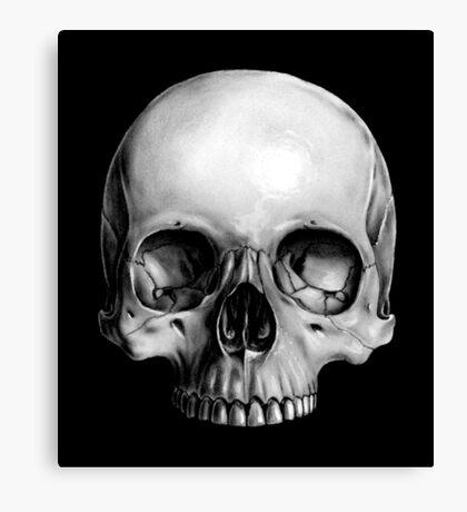 Half Skull Canvas Print
