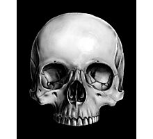 Half Skull Photographic Print