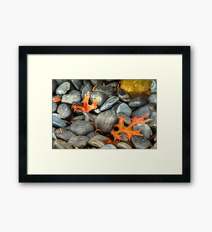 Things change Framed Print