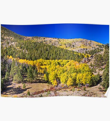 Colorado Gold Blue Poster