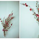 July Diptych 2014 by Lisa  Epp